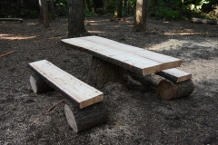 Table-on-stump-and-benches
